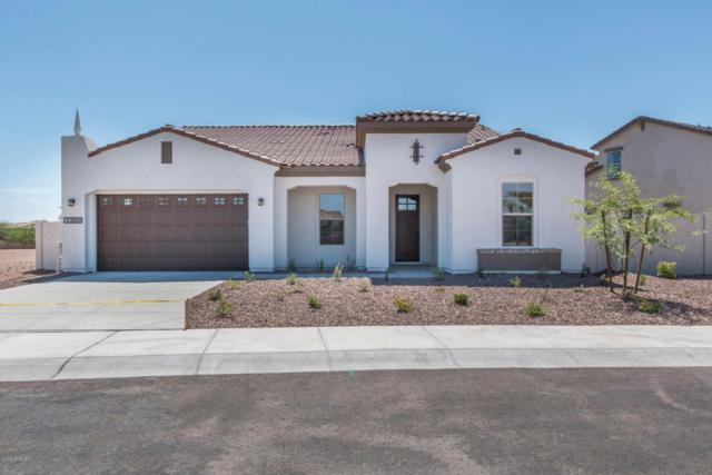 30889 N 128TH Drive, Peoria, AZ 85383 (MLS #5845766) :: Kelly Cook Real Estate Group