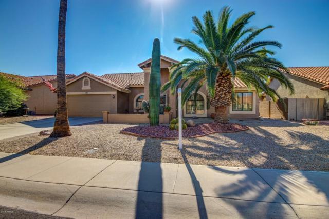 9603 W Sierra Pinta Drive, Peoria, AZ 85382 (MLS #5845767) :: Kelly Cook Real Estate Group