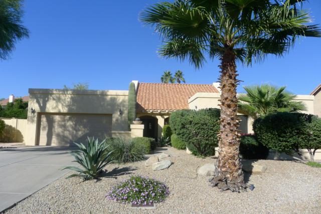 9850 E Windrose Drive, Scottsdale, AZ 85260 (MLS #5845768) :: RE/MAX Excalibur