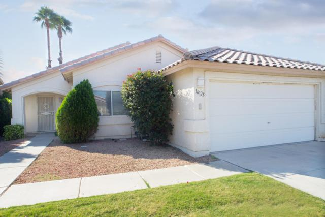16123 W Mesquite Drive, Goodyear, AZ 85338 (MLS #5845785) :: Kelly Cook Real Estate Group