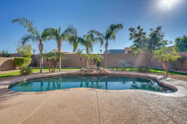 1239 E Kramer Circle, Mesa, AZ 85203 (MLS #5845822) :: Yost Realty Group at RE/MAX Casa Grande