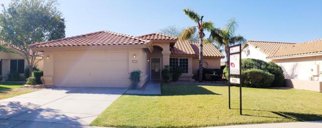 21960 N 73RD Avenue, Glendale, AZ 85310 (MLS #5845878) :: Kelly Cook Real Estate Group