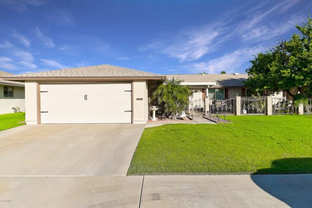 10604 W Roundelay Circle, Sun City, AZ 85351 (MLS #5845902) :: Riddle Realty