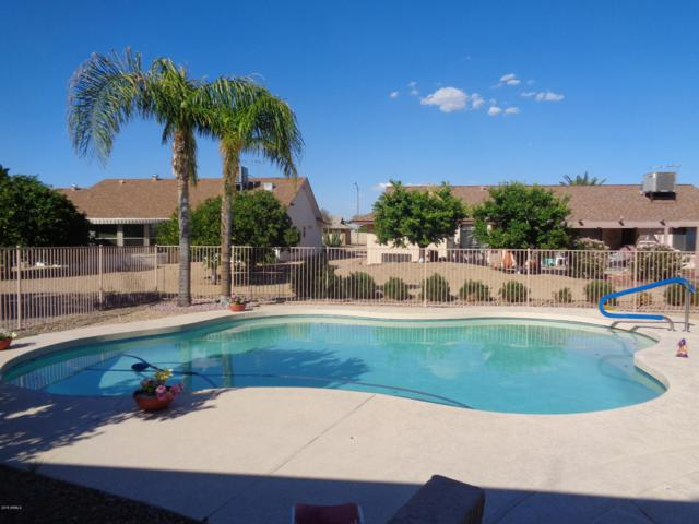 14418 W Ravenswood Drive, Sun City West, AZ 85375 (MLS #5845908) :: Kelly Cook Real Estate Group