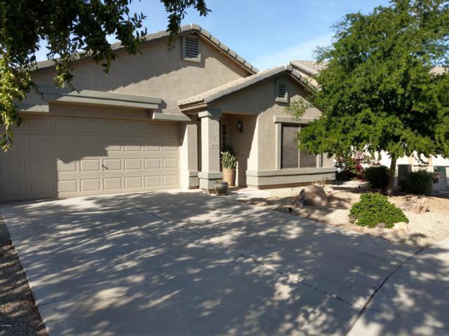 21424 N Reinbold Drive, Maricopa, AZ 85138 (MLS #5845927) :: Group 46:10