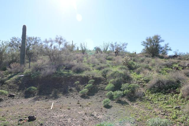 33xxx N 5th Drive, Phoenix, AZ 85085 (MLS #5845938) :: RE/MAX Excalibur
