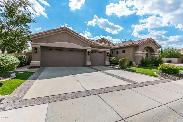 4501 E Via Montoya Drive, Phoenix, AZ 85050 (MLS #5845973) :: The W Group