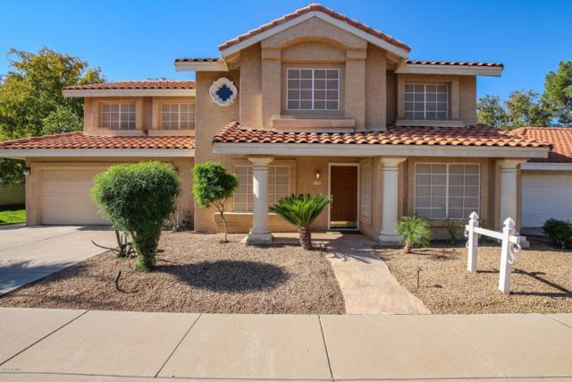 832 N Tercera Avenue, Chandler, AZ 85226 (MLS #5845978) :: Kelly Cook Real Estate Group