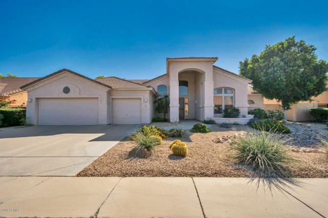 1207 W Armstrong Way, Chandler, AZ 85286 (MLS #5846005) :: Kelly Cook Real Estate Group