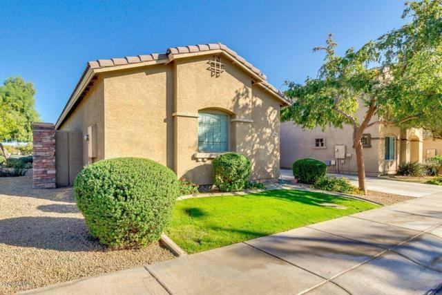 1049 S Exeter Street, Chandler, AZ 85286 (MLS #5846031) :: Kelly Cook Real Estate Group