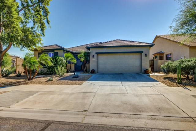 13535 W Country Gables Drive, Surprise, AZ 85379 (MLS #5846063) :: Kelly Cook Real Estate Group