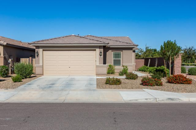 1472 W Princess Tree Avenue, Queen Creek, AZ 85140 (MLS #5846081) :: Yost Realty Group at RE/MAX Casa Grande