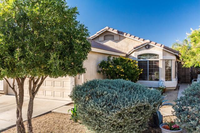6428 W Chisum Trail, Phoenix, AZ 85083 (MLS #5846103) :: Kepple Real Estate Group