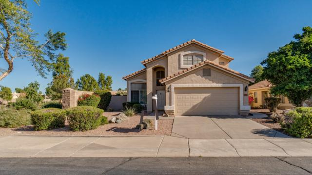 2611 S Santa Anna Street, Chandler, AZ 85286 (MLS #5846115) :: RE/MAX Excalibur