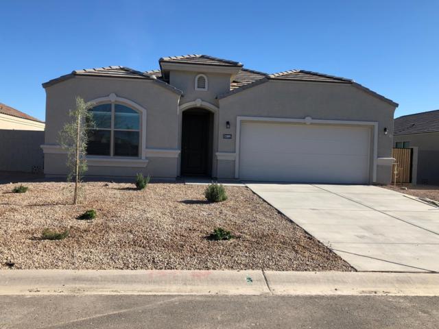 35895 N Loemann Drive, San Tan Valley, AZ 85143 (MLS #5846143) :: Yost Realty Group at RE/MAX Casa Grande