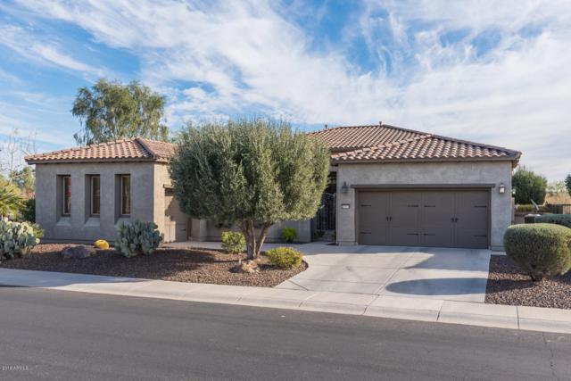 27113 N 130TH Drive, Peoria, AZ 85383 (MLS #5846151) :: The Laughton Team