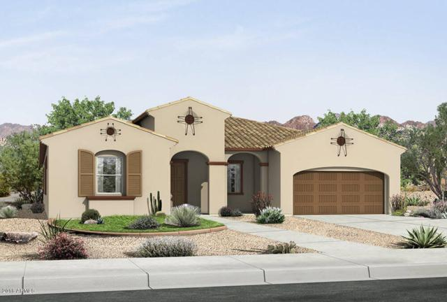 22747 S 229th Place, Queen Creek, AZ 85142 (MLS #5846156) :: Lux Home Group at  Keller Williams Realty Phoenix