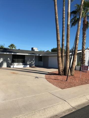 8738 E Starlight Way, Scottsdale, AZ 85250 (MLS #5846164) :: RE/MAX Excalibur