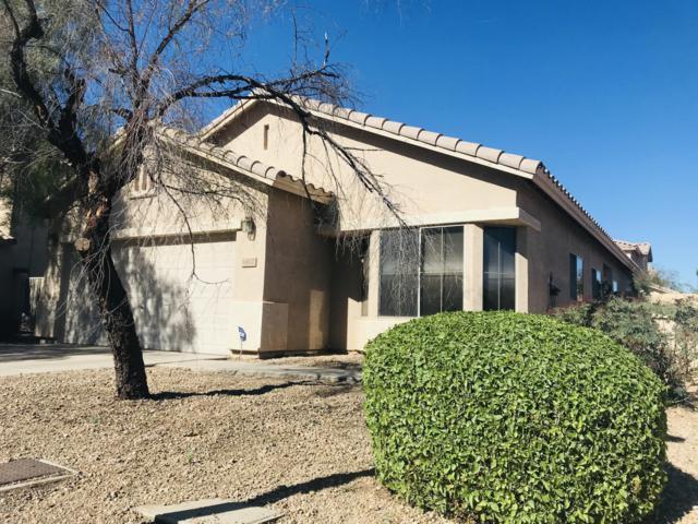 6412 W Hilton Avenue, Phoenix, AZ 85043 (MLS #5846169) :: The W Group