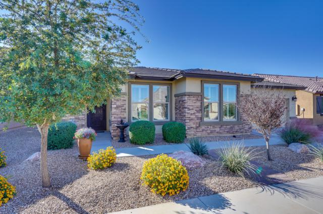 17935 W Glenhaven Drive, Goodyear, AZ 85338 (MLS #5846192) :: Kortright Group - West USA Realty
