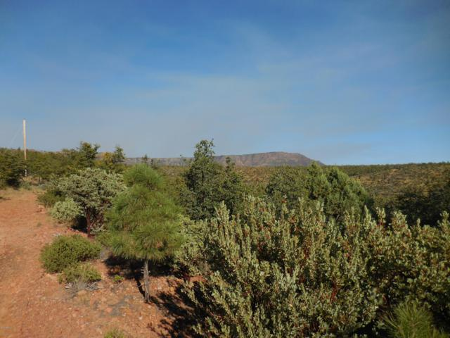 Lot #31B N Rocking Horse Bend, Payson, AZ 85541 (MLS #5846222) :: Riddle Realty