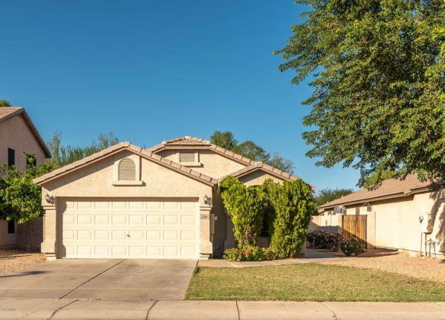 2288 E Arabian Drive, Gilbert, AZ 85296 (MLS #5846228) :: Lux Home Group at  Keller Williams Realty Phoenix