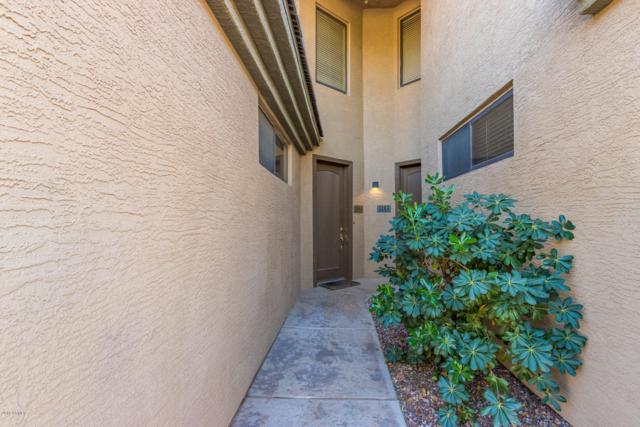 705 W Queen Creek Road #1184, Chandler, AZ 85248 (MLS #5846232) :: Lux Home Group at  Keller Williams Realty Phoenix