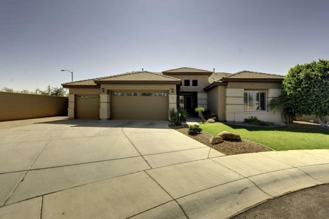 8505 W Potter Drive, Peoria, AZ 85382 (MLS #5846253) :: The Kenny Klaus Team