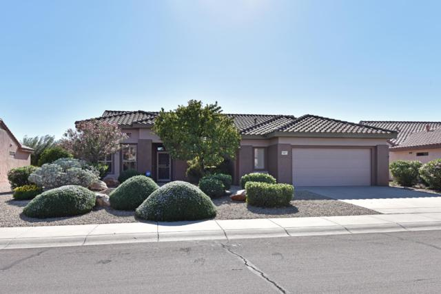 15971 W La Paloma Drive, Surprise, AZ 85374 (MLS #5846258) :: Devor Real Estate Associates
