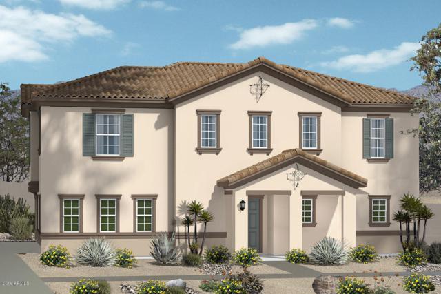 16648 W Jenan Drive, Surprise, AZ 85388 (MLS #5846281) :: Arizona 1 Real Estate Team