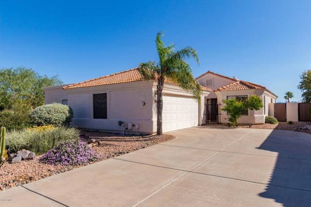 12233 N Falcon Drive, Fountain Hills, AZ 85268 (MLS #5846306) :: The W Group