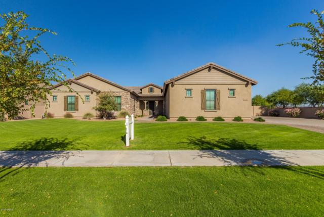 17792 E Colt Drive Queen, Queen Creek, AZ 85142 (MLS #5846317) :: The W Group