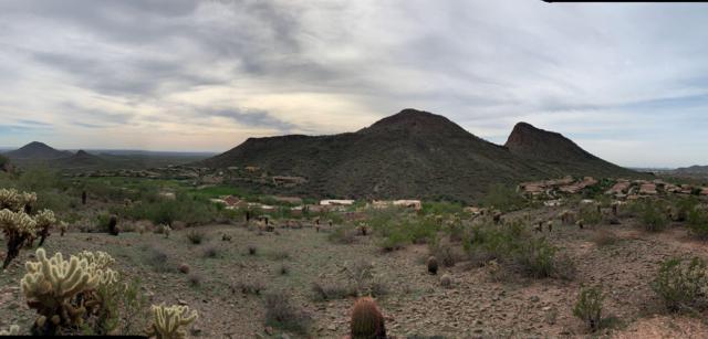 9805 N Talon Trail N, Fountain Hills, AZ 85268 (MLS #5846353) :: The W Group