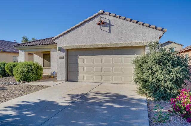 11626 W Tonto Street, Avondale, AZ 85323 (MLS #5846356) :: Kelly Cook Real Estate Group