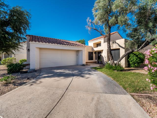 15118 N 86TH Lane, Peoria, AZ 85381 (MLS #5846357) :: Riddle Realty