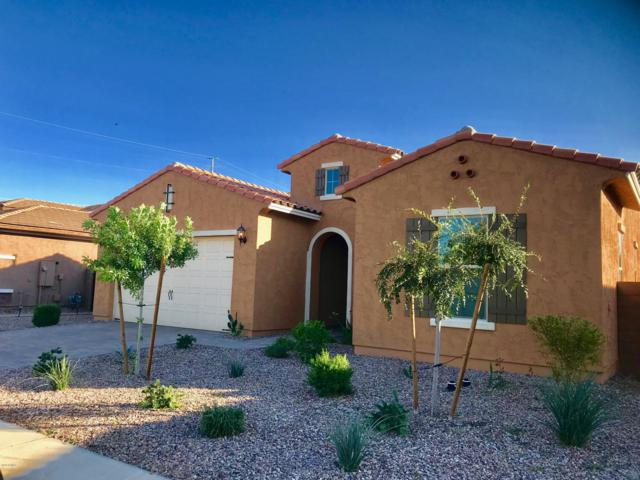 3041 E Indigo Court, Chandler, AZ 85286 (MLS #5846361) :: Lux Home Group at  Keller Williams Realty Phoenix