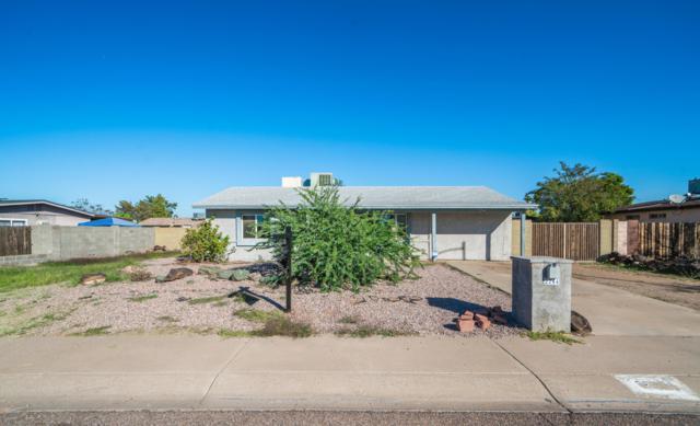 2244 W Michigan Avenue, Phoenix, AZ 85023 (MLS #5846373) :: Yost Realty Group at RE/MAX Casa Grande