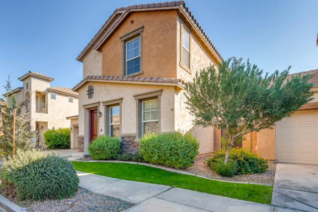 4233 E Carla Vista Drive, Gilbert, AZ 85295 (MLS #5846459) :: The Garcia Group