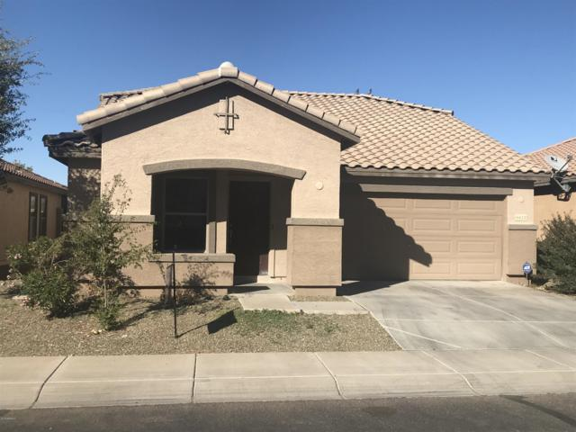 6412 W Sophie Lane, Laveen, AZ 85339 (MLS #5846510) :: The Property Partners at eXp Realty