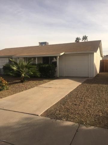 3823 E Gelding Drive, Phoenix, AZ 85032 (MLS #5846513) :: The Garcia Group