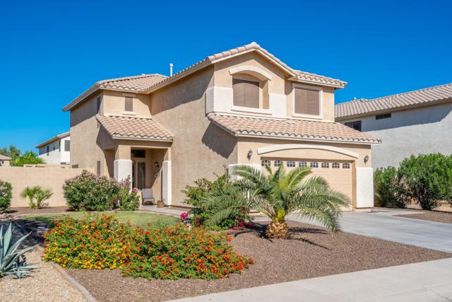 13442 W Crocus Drive, Surprise, AZ 85379 (MLS #5846523) :: Group 46:10