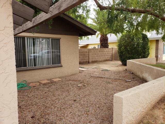 342 Ancora Drive W, Litchfield Park, AZ 85340 (MLS #5846524) :: Group 46:10