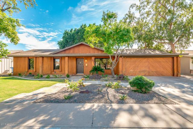 449 W Gary Drive, Chandler, AZ 85225 (MLS #5846551) :: Lux Home Group at  Keller Williams Realty Phoenix