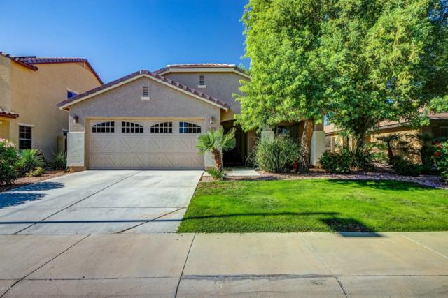 16822 N 183RD Drive, Surprise, AZ 85388 (MLS #5846568) :: Group 46:10