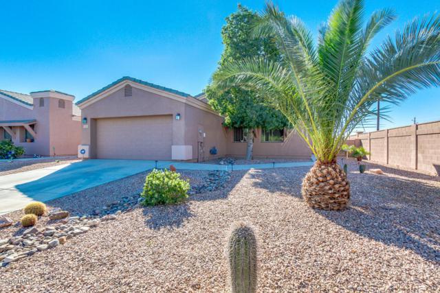 3971 W Lariat Court, Eloy, AZ 85131 (MLS #5846574) :: Yost Realty Group at RE/MAX Casa Grande