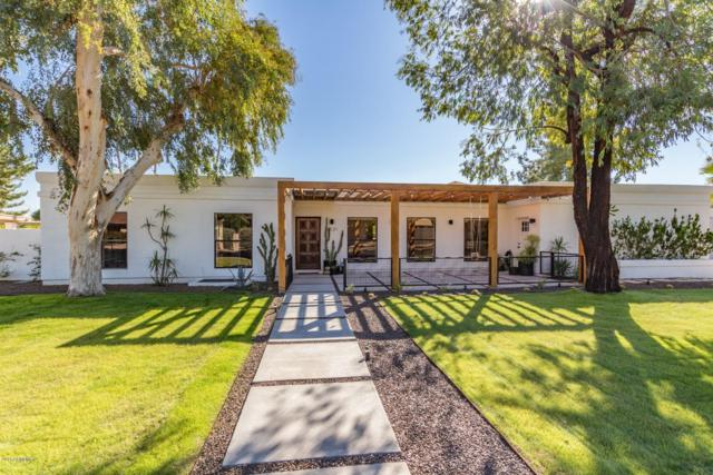2331 E Jensen Street, Mesa, AZ 85213 (MLS #5846587) :: Group 46:10