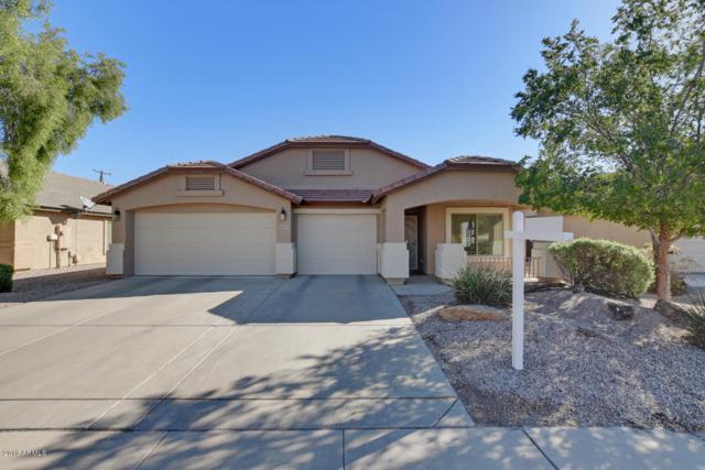 8033 N 56th Drive, Glendale, AZ 85302 (MLS #5846588) :: Group 46:10
