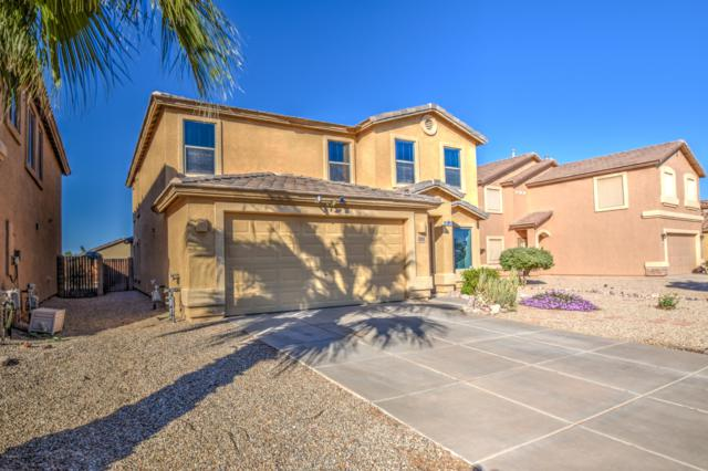 11028 E Wallflower Lane, Florence, AZ 85132 (MLS #5846592) :: Lifestyle Partners Team