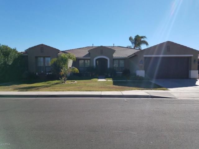 11415 E Roselle Avenue, Mesa, AZ 85212 (MLS #5846601) :: Group 46:10