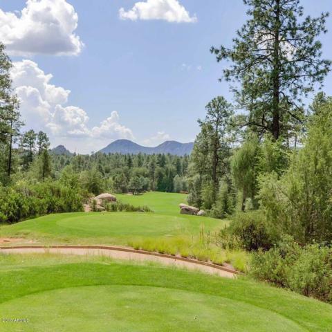 2502 E Scarlet Bugler Circle, Payson, AZ 85541 (MLS #5846620) :: The Daniel Montez Real Estate Group